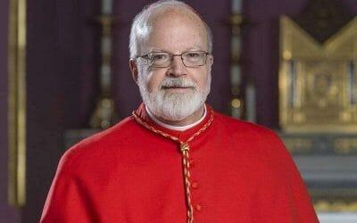 Cardinal 'O Malley on CIC Book VI amendments